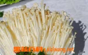 金针菇高产方法 告诉你如何提高金针菇产量